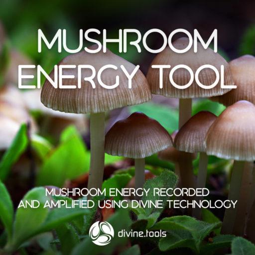 Mushroom Energy Tool